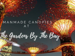 Manmade Canopies at the Gardens By The Bay
