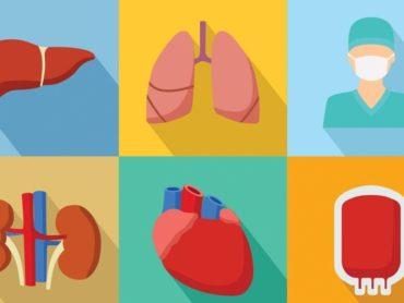 Organ Donation: Should It Be Made Mandatory?